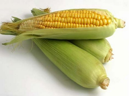 Sweet Corn Why Does Corn Come Out Whole
